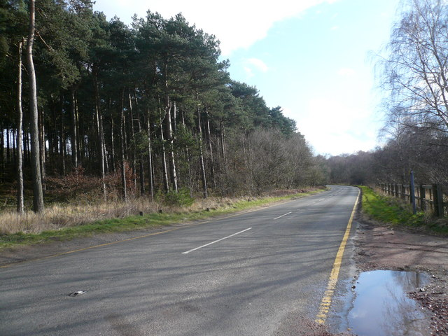 Sherwood Forest - Swinecote Road (B6034)