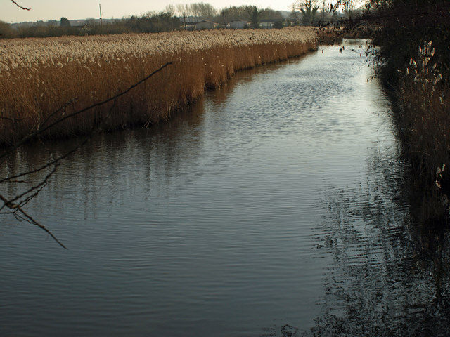 February Reed Beds