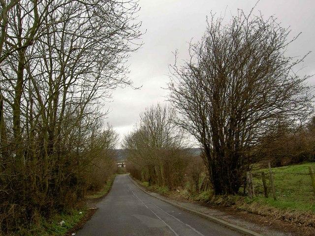 Bloomhouse Lane
