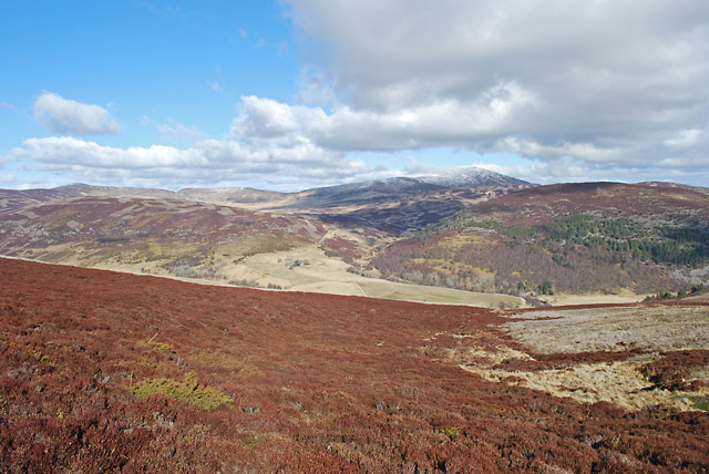 Grouse moor below Carn Dearg