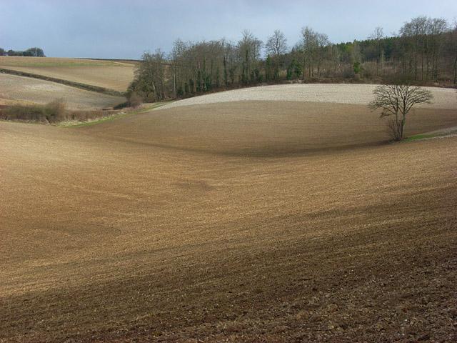 Farmland in the Hambleden Valley