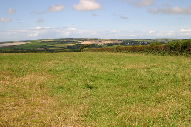 Fields West of Hewish Down