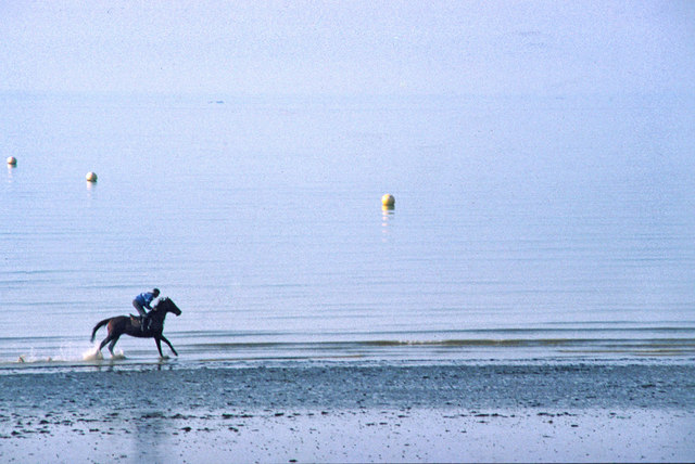 Horse galloping in surf, Bognor Regis, West Sussex