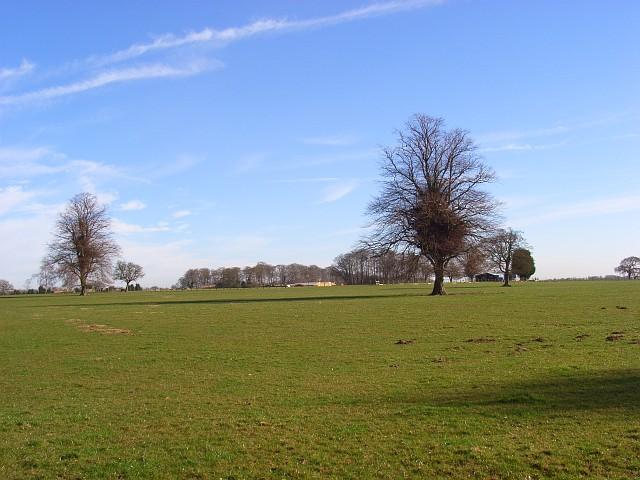 Pasture, Parmoor