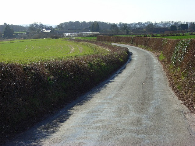 Road at Pheasants
