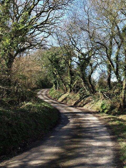 Lane to Elmfield