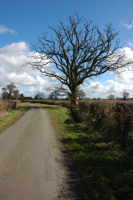 Road from Rye Street to Longdon Marsh