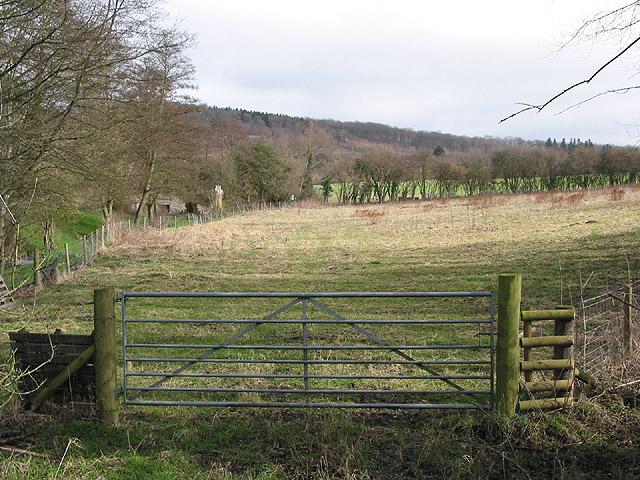 Grazing land near Nupend Farm