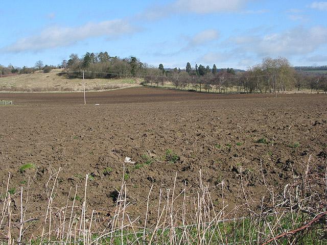 Ploughed field near Terrace Farm