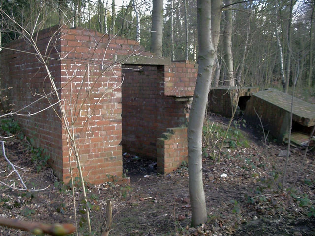 Disused military structures in Gleadthorpe Breck Plantation