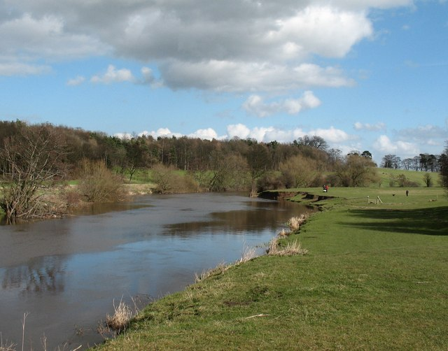 The Wharfe approaching Tadcaster