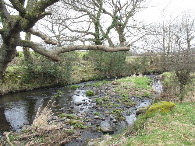 An ait in Afon Carrog
