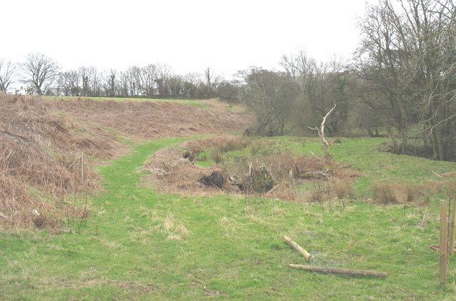 Path alongside Afon Carrog