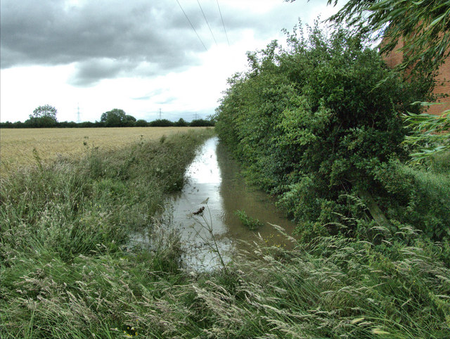 The Beck Behind Field Head