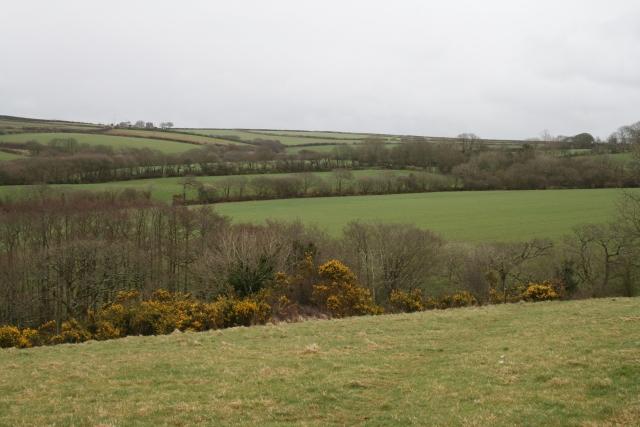 Fieldscape near Blable House