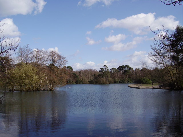 Longmoor Lake at California Country Park