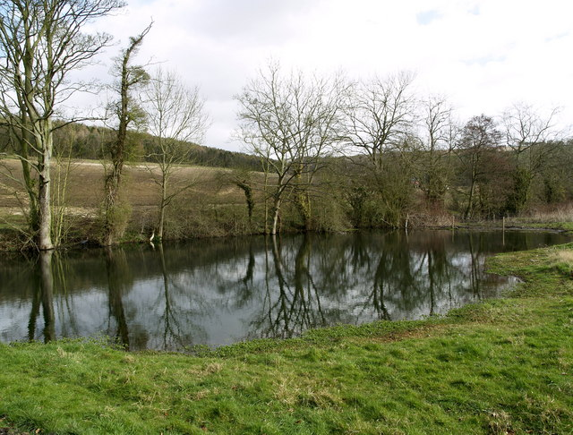 A Pond in Drewton Dale
