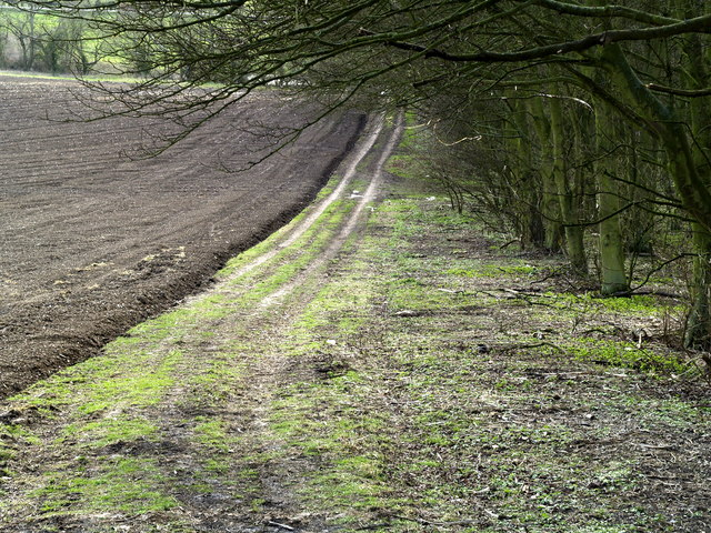 The Path down to Drewton Dale