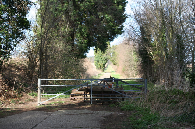 Gateway to Mile Road Track
