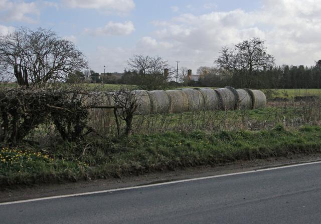 Towards North Grange Meaux