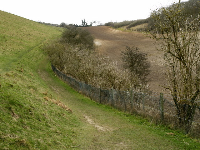 Looking up Comber Dale