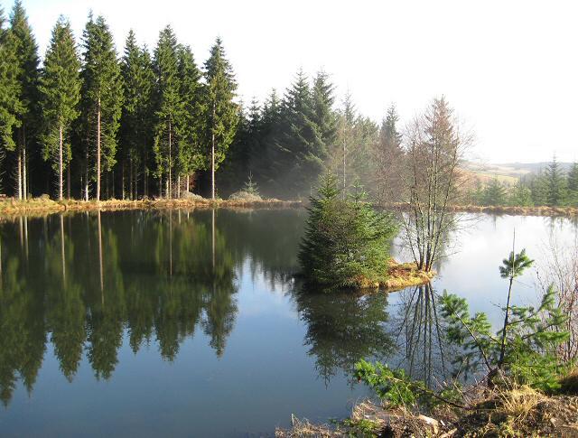 Lochan in Blackcraig Forest