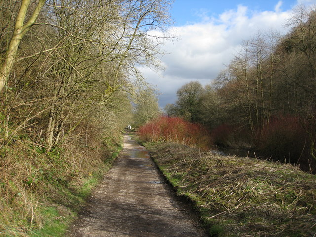 Lathkill Dale Nature Reserve Footpath