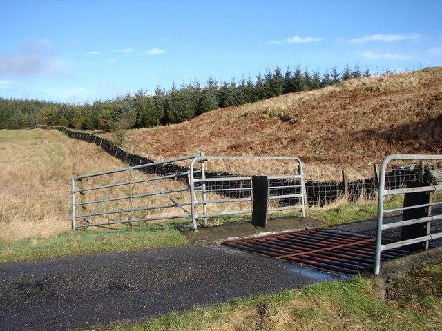 Kiln Hill Burn