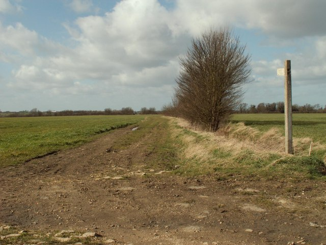 Bridleway to Dunmow Road