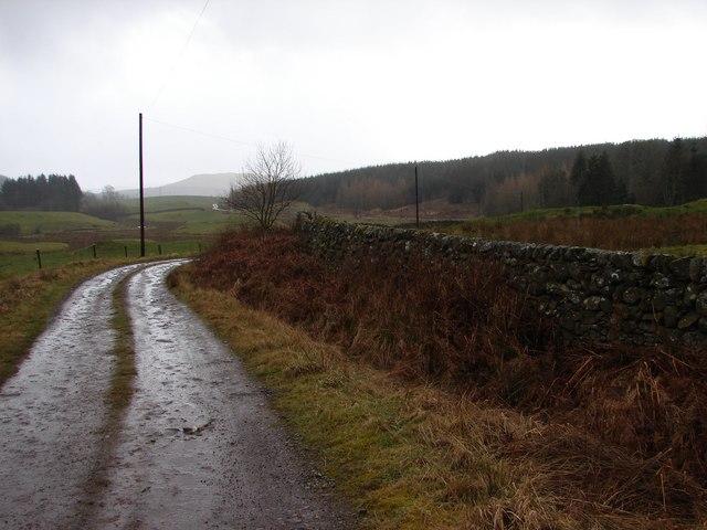 Glenswinton Track at Shaw Fell