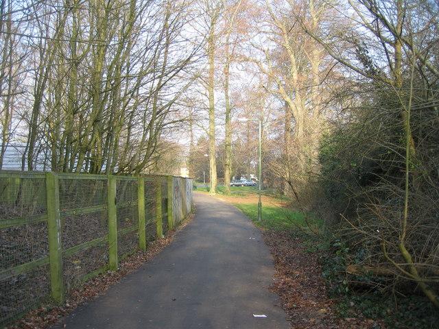 Footpath & trees
