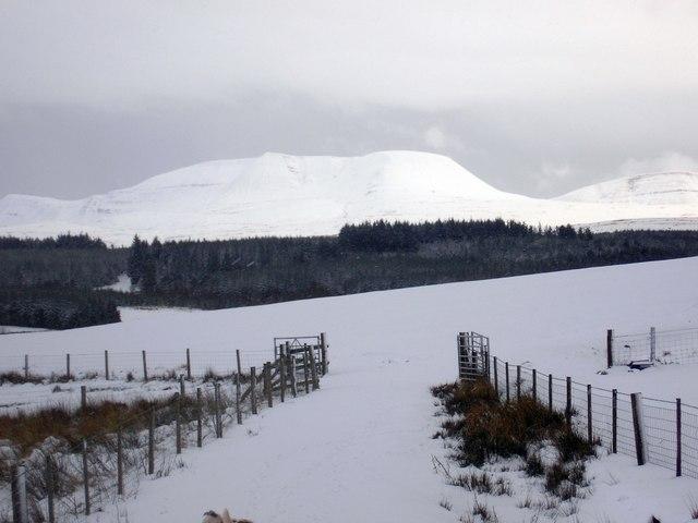 A snowy Fan Brycheiniog from Gwernwyddog