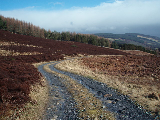 Track, Brae of Pitcastle
