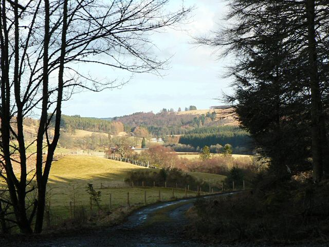 Strathardle from Blackcraig Forest
