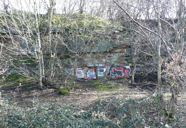 Quarry face, Strangstry Wood, Rastrick