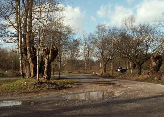 A view from the car park on Jack's Hill, Epping Forest