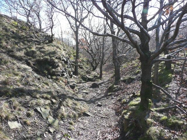Strangstry Wood, Elland