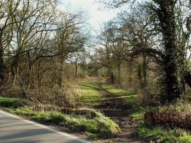 A bridleway known as Green Lane Path