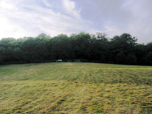 The edge of Epping Forest provides a backdrop to a near-empty Debden House campsite
