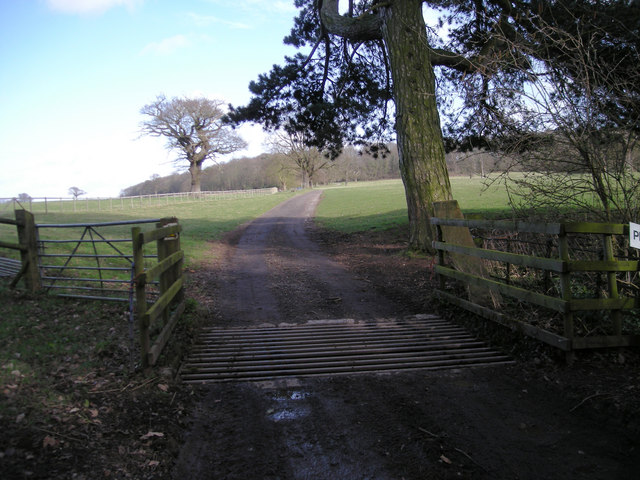 Cattle Grid & Private Road