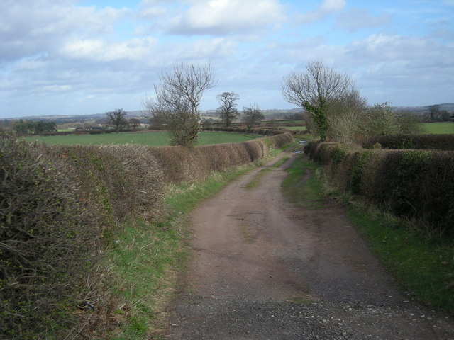 Farmtrack at Oldington