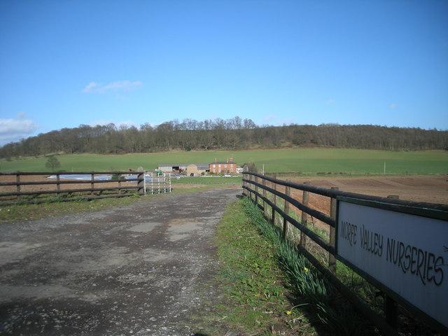 This way to Morfe Valley Nurseries