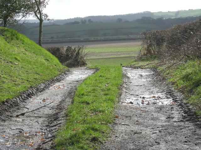 Bridleway at Lower Dryton