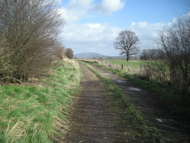Farm track from Atcham Grange