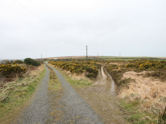 Junction with track on St Breock Downs