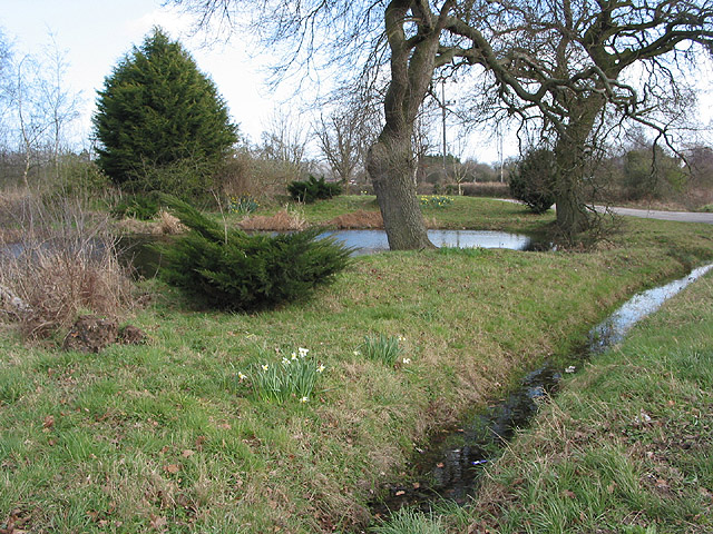 Pond and drainage ditch, Hampton Park Road