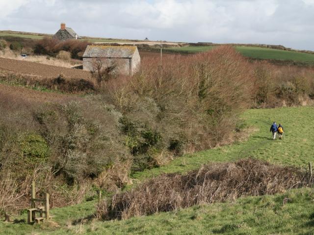 Footpath to Tregerrin Barns