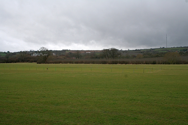 Cricket square, Much Marcle