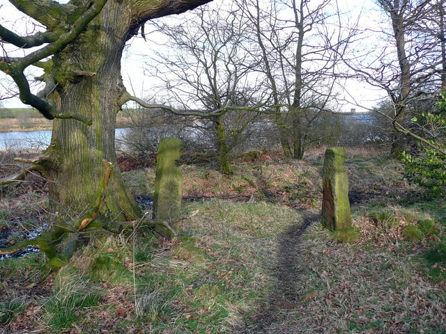 Stone gateposts in woodland to the west of Royd Moor Reservoir