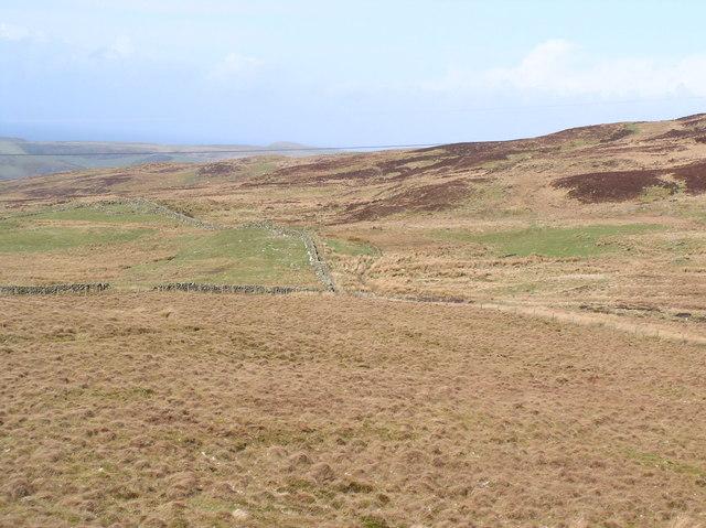 Moorland Dykes